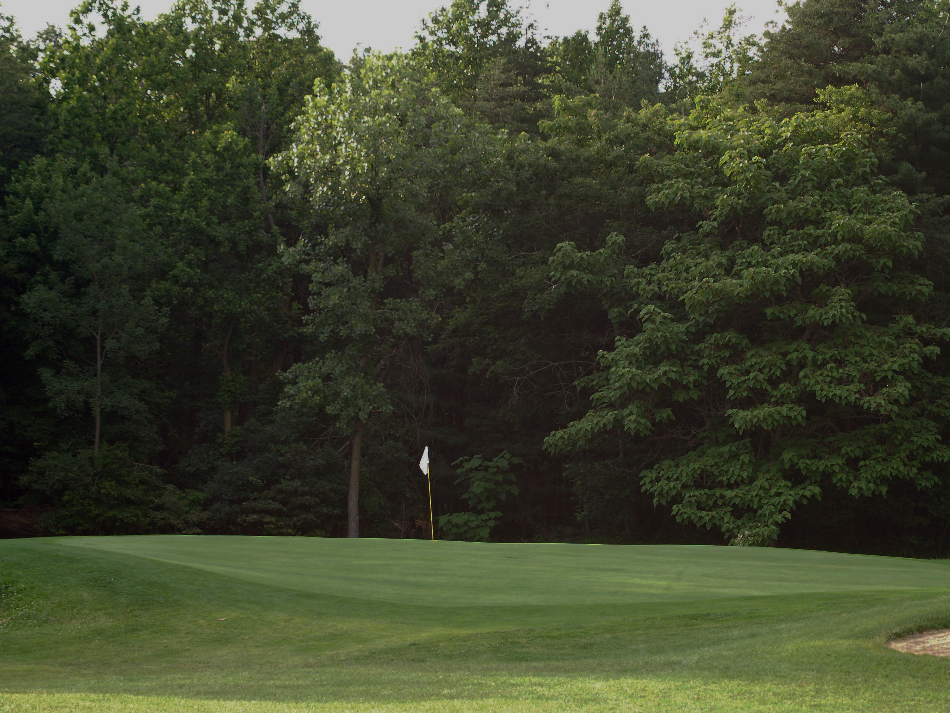 View of fourteenth hole toward the green from about 100 yrds. Click to enlarge