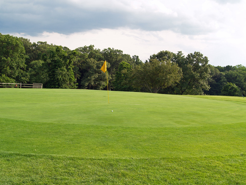 View of nineth hole from behind the green toward the tee. Click to enlarge